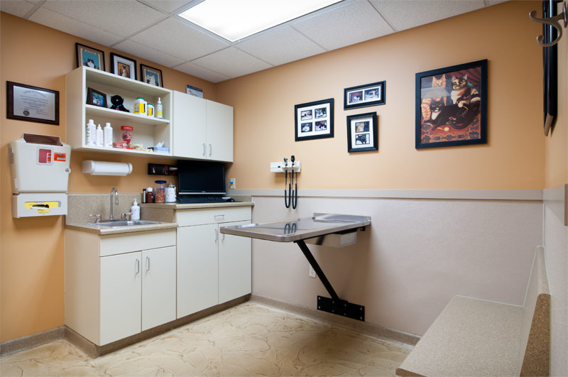 Hobart Animal Clinic Reception Area